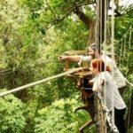 Treetop Walkway at Lake Manyara National Park