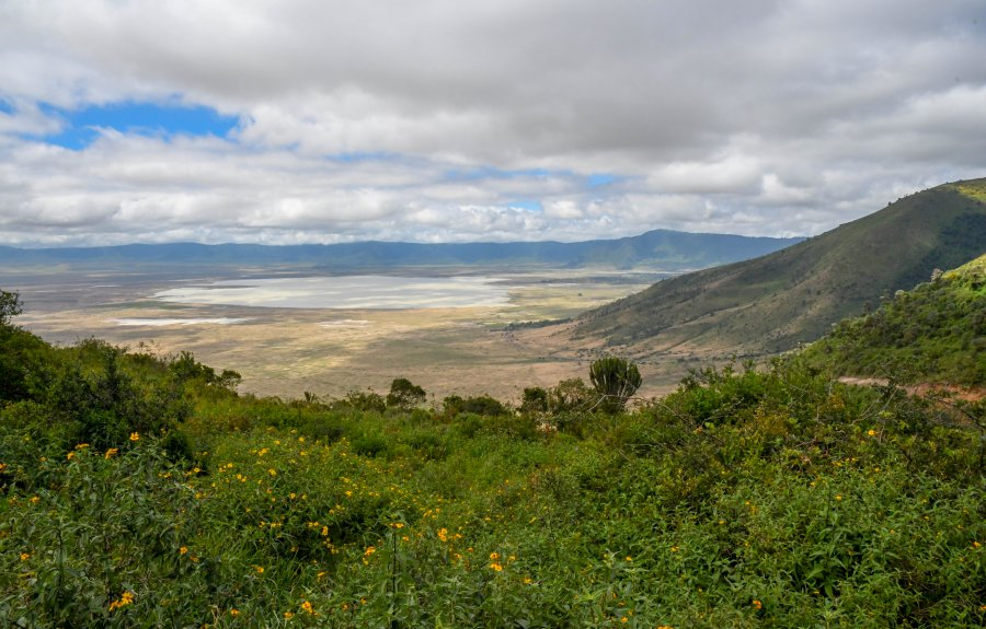 Game drive in the Ngorongoro Crater Tanzania