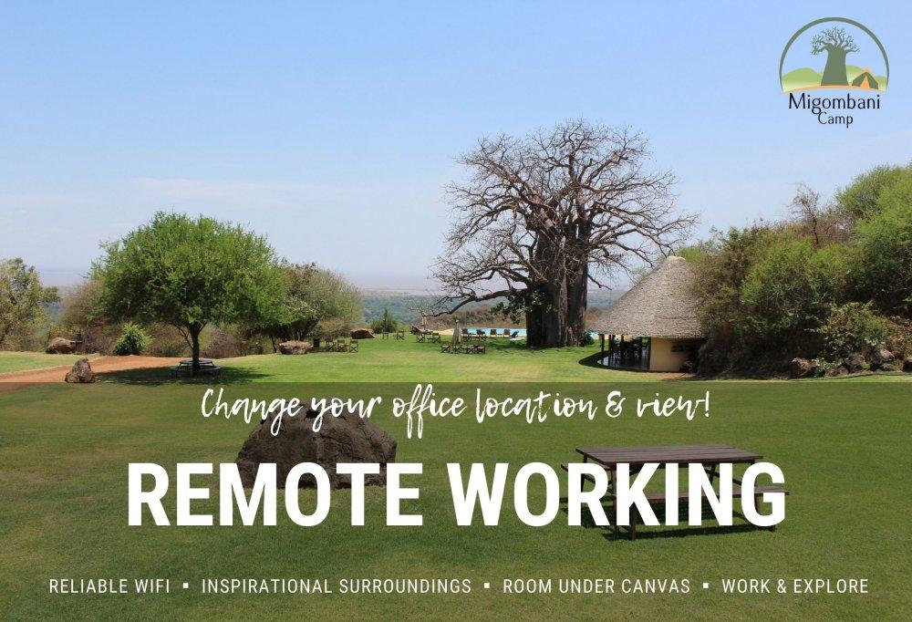 Migombani Camp remote working package