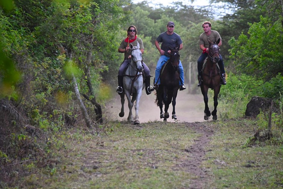 Horse riding at the Ngorongoro Crater rim from Gibb's Farm
